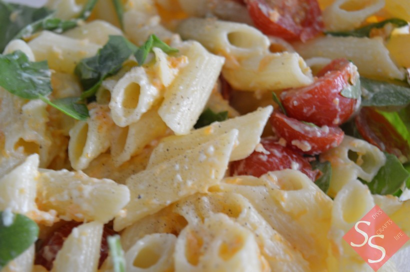 Cheesy Pasta Salad Recipe